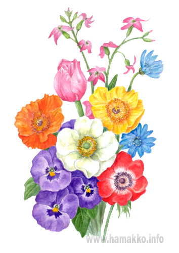 Botanical Art Botanical Painting Flower Painting Bouquet Of