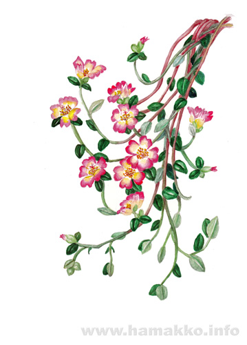 Painting Images Of Flower